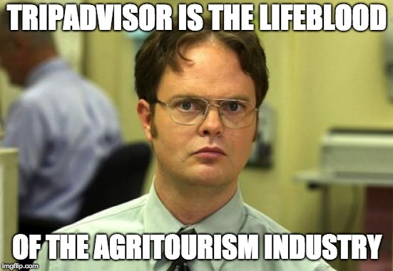 customer-reviews-explained-by-dwight-from-the-office